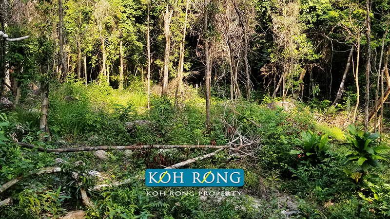 Koh Rong 1 hectare For Sale